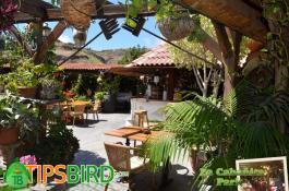 la cabanita park maspalomas tipsbird - La Cabanita