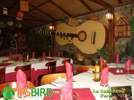 cabanita park tipsbird - La Cabanita